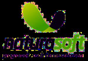 WordPress, WooCommerce + Naturasoft XML összeköttetés 1