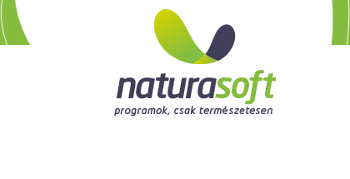 WordPress, WooCommerce + Naturasoft XML összeköttetés